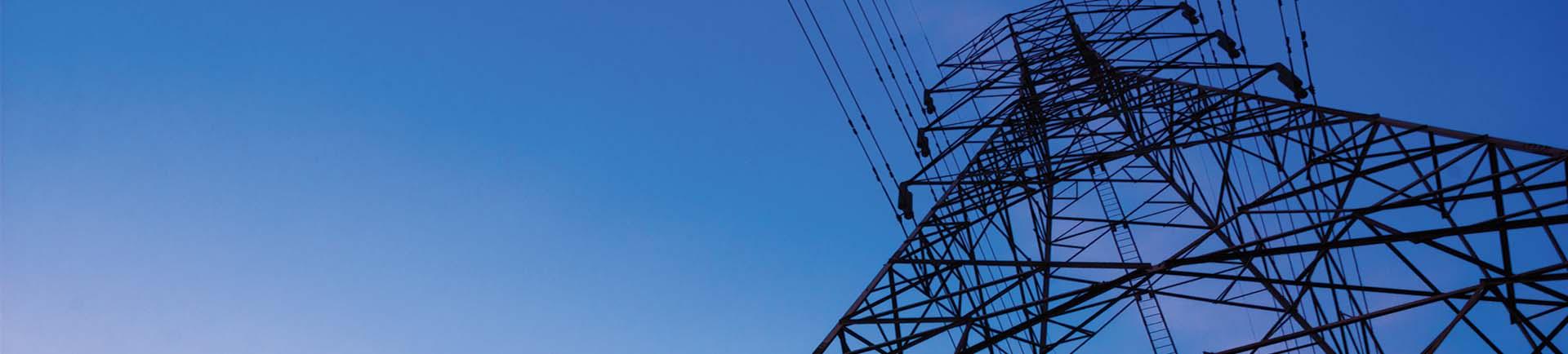 R S  Infraprojects Pvt  Ltd  - Power Transmission EPC